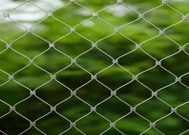 X Tend Stainless Steel Green Wall Mesh For Plants Supporting / Garden Fence