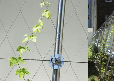 YT Stainless Steel Garden Fence , Diamond Mesh Wire Fence For Green Plants