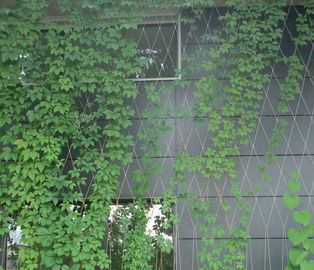 Weatherproof Green Wall Mesh Lightweight For Living Green Walls Plant Surviving