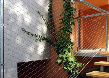 China X Tend Green Wall Mesh / Stainless Steel Wire Trellis For Plant Climbing factory