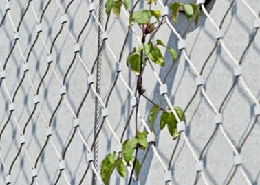 China Stainless Steel Green Wall Mesh Net Ferrules / Knotted Type For Garden factory